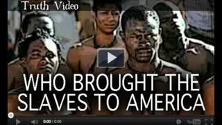 Who Brought the Slaves to America