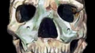 Revenge of the Neanderthal -- What It May Mean For The World Today 10 Min V