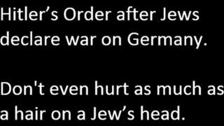 Michael Collins Piper MCP Hitler's Order - Don't even hurt as much as a hair on a jew's head (+book)