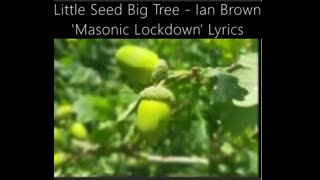 Ian Brown Little Seed Big Tree (Banned On Spotify!) Ant