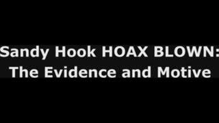 Sandy Hook Hoax Blown The Evidence And Motive