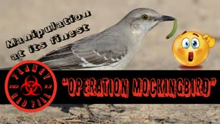 "PRP Episode 3. ""Operation Mockingbird"""