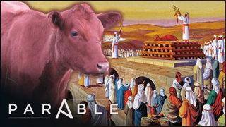 The Origins Of The Temple Mount and The Red Heifer Prophecy