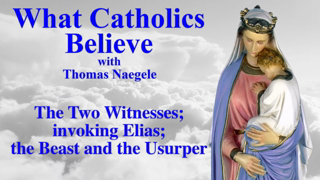 The Two Witnesses; invoking Elias; the Beast and the Usurper