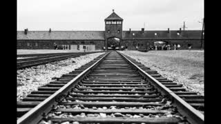 Do the Locomotion with me in Auschwitz by Fashbird2814