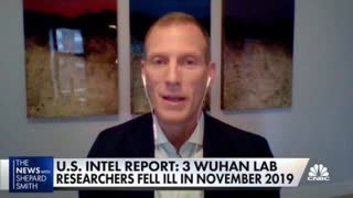 Atlantic Council fellow: Likely Covid-19 came from Wuhan lab