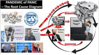 This Pandemic of Panic - EXPLAINED SIMPLY - in 3 minutes flat!