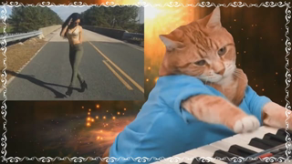 Miggy Mgtow101 Piano Cat Outro Uncensored
