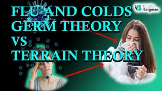 Flu And Colds Germs Theory vs. Terrain Theory by Dr. John Bergman D.C.