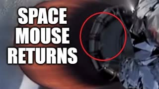 During Elon Musk's Fake Space Launch Last Week It Seems Like Space Mouse Made Another Appearance 🤣
