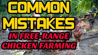 COMMON MISTAKES IN FREE-RANGE CHICKEN FARMING