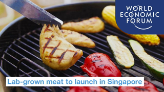 Lab-grown meat approved for sale in Singapore | World Economic Forum