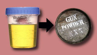 Gunpowder was made from Women's Urine (Pee) during the Civil War - Saltpeter or Potassium Nitrate