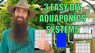 Aquaponics Design - 3 Easiest System Builds for the Backyard