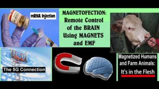 Magnetofection: Remote Control of Brain with mRNA Injection + Magnetized Meat & 5G Connection