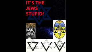 Curt Maynard and several other authors - It's the Jews Stupid Collection Compilation