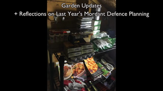 Garden Updates + Family Defence.mp4