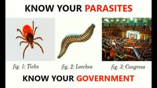 Governments are parasites. Countries topple because of greed and fear (Have we already fallen?)